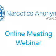 NA World Services Online Meeting Webinar